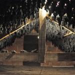 l'élevage des chauve-souris...